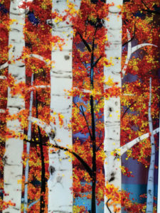 Gene Hester and Liz Conces Spencer - Aspens