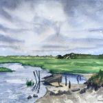 Long Point Marsh by Dawna Hasara