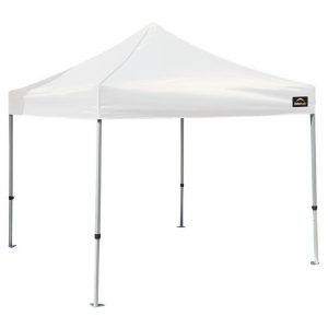 10 x 10 Tent - White is the best